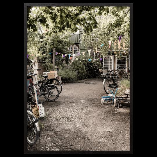 Backyard Poster