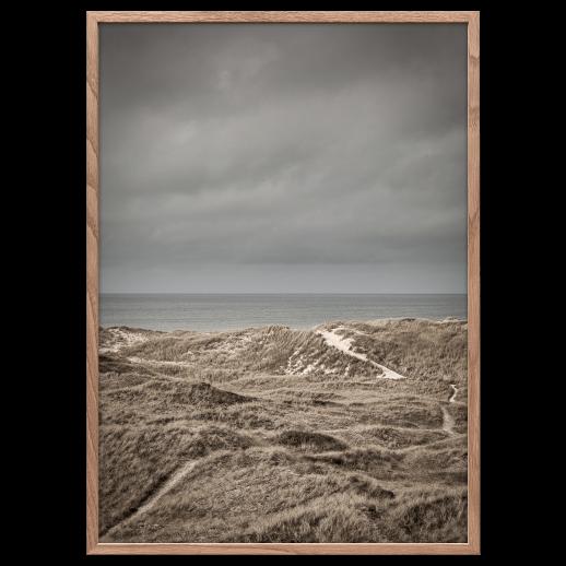Skagen dunes poster