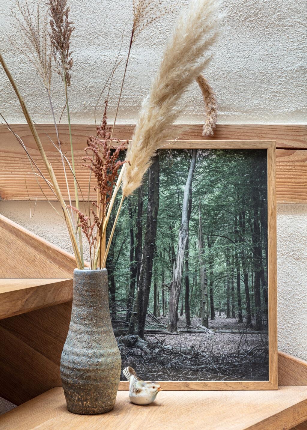 Forest poster from Denmark